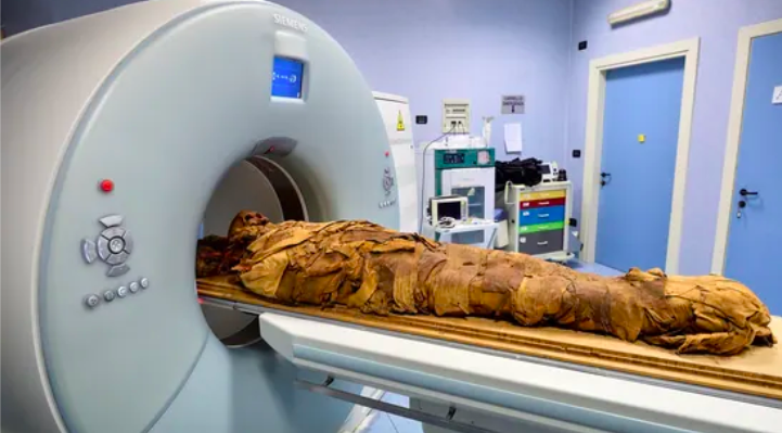 An Egyptian mummy undergoes a CT scan in order for researchers to investigate its history.(REUTERS)